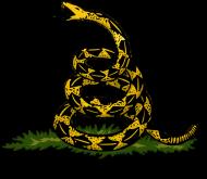 Gadsen Flag (yellow)