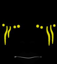 BEY SORRY FACE (poszewka)