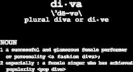 DIVA (v-neck)