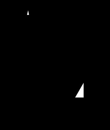 CARTER 04 (v-neck)