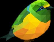 Ptaszek Kid