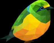 Ptaszek Boy