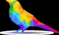 Ptak Kolor Kid
