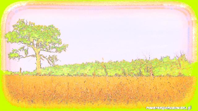 Mazowieckie Pejzaże: Adelin - torba