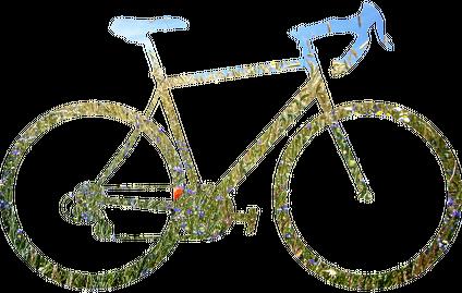 Rower Polny - kubek