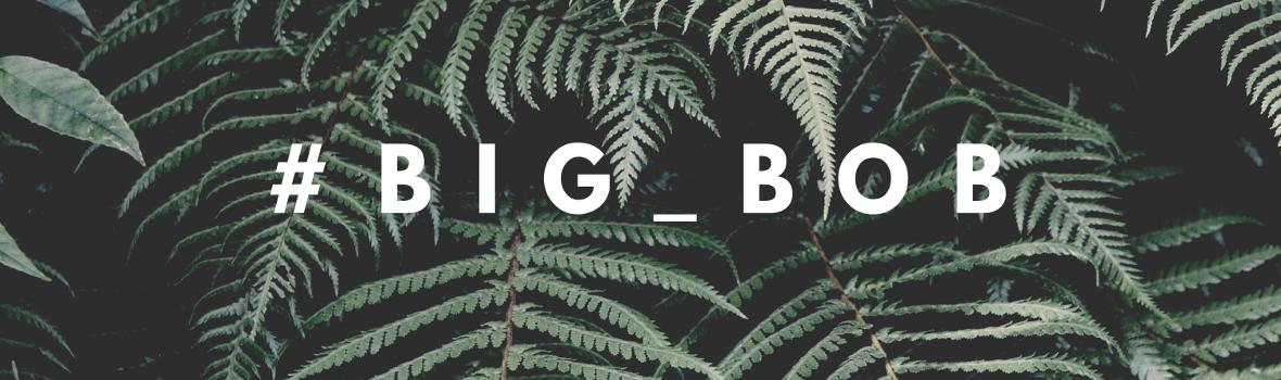 BIG BOB - Koszulki FullPrint